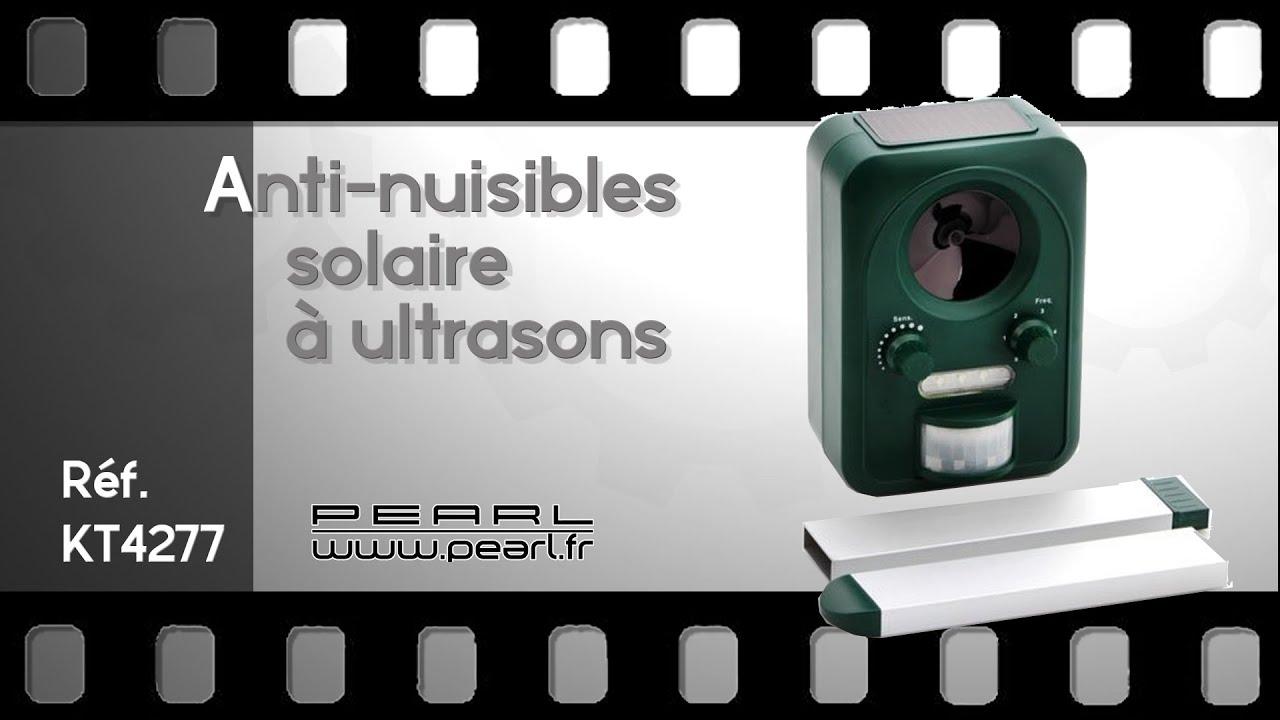Repulsif ultrason chien chat rongeurs oiseaux et for Repulsif chat exterieur ultrason