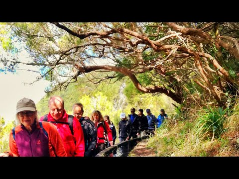Madeira Levada walks- Rabaçal/ Risco/ 25 Fontes with Madeira Adventure Kingdom