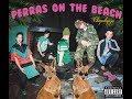 Perras on the Beach - Ramona