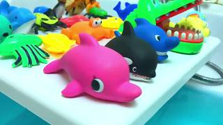 Learn Colors Baby Sea Animals Toys with Baby Shark Nursery Rhymes Song for Kids Children