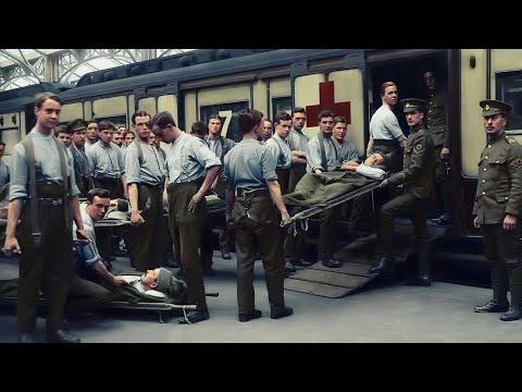 Documental - La Gripe Española De 1918