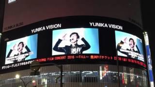 東方神起 ユニカビジョン (2016) Y3K Purple Line