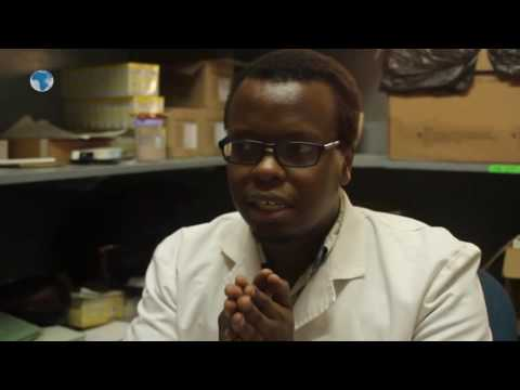 Doctor explains the effects of ARVs when administered to a HIV negative person