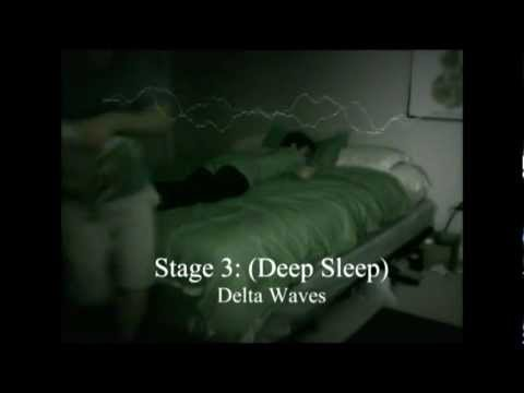 Stages of Sleep (Psychology)