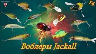 Константин Кузьмин. Воблеры Jackall.