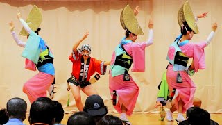 徳島の阿波踊り 第32回ビッグひな祭り開幕日。 地元で活躍する#やっこ連 が阿波踊りを披露しました。 動画を視聴いただきありがとうございます。 よかったらチャンネル登録 ...