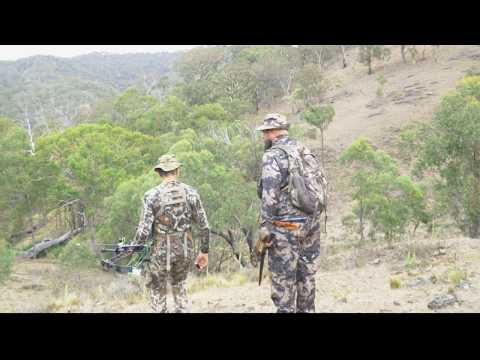 Bowhunting Australia, 2 Out Of 3. Goats, Pig And Deer