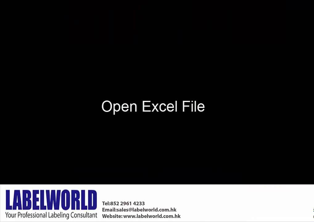 DYMO Labelwriter How to use Excel Add in Function