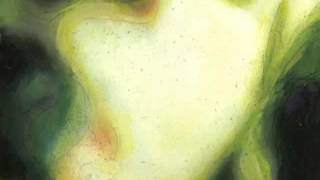 Smashing Pumpkins Venus In Furs Pisces Iscariot 2012 Version.mp3
