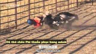 [Vietsub] Trailer tập 7 - The Amazing Race China Season 2