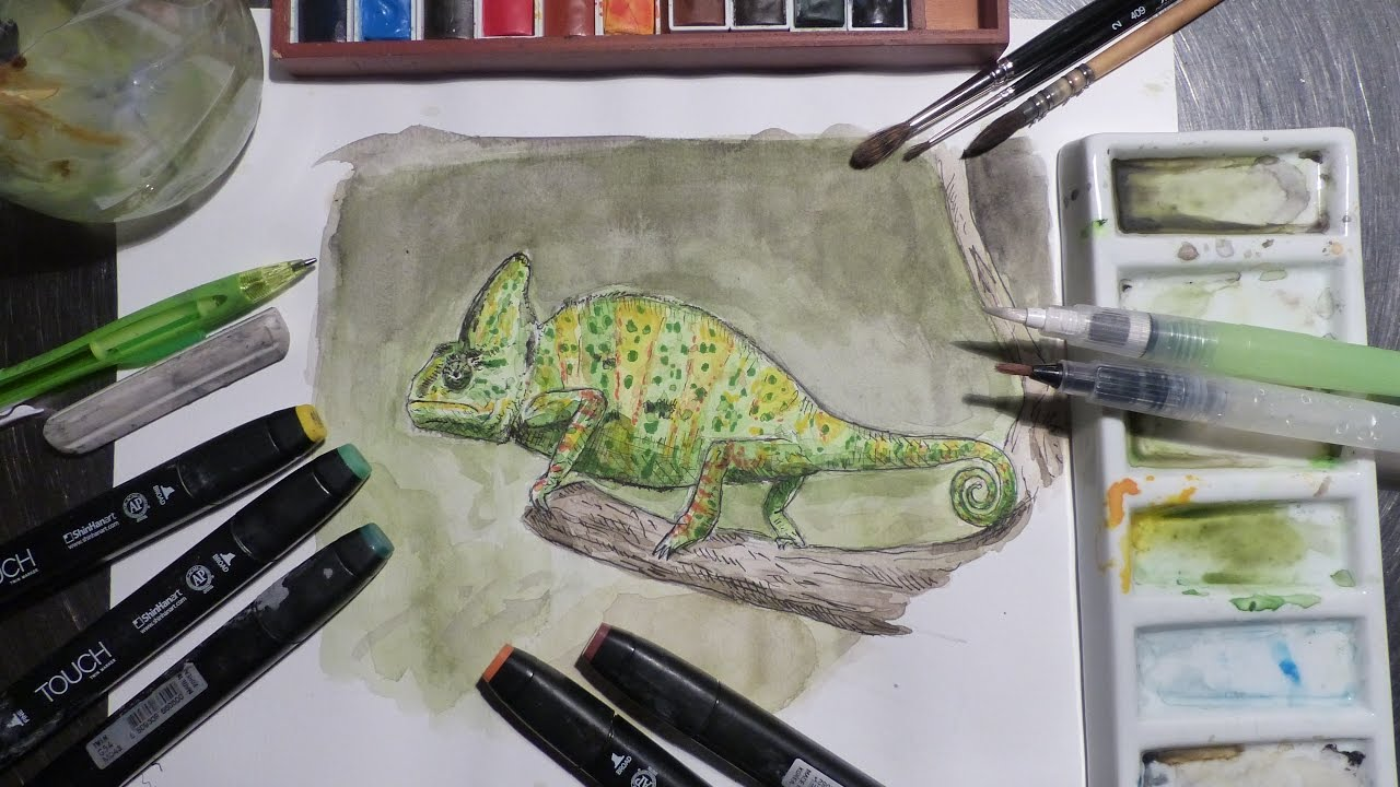 a9b9b9157 Dessin de cameleon/Drawing a chameleon (speed drawing) - YouTube