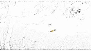 Auto Draw 2: Aspens And Windblown Grasses, Idaho