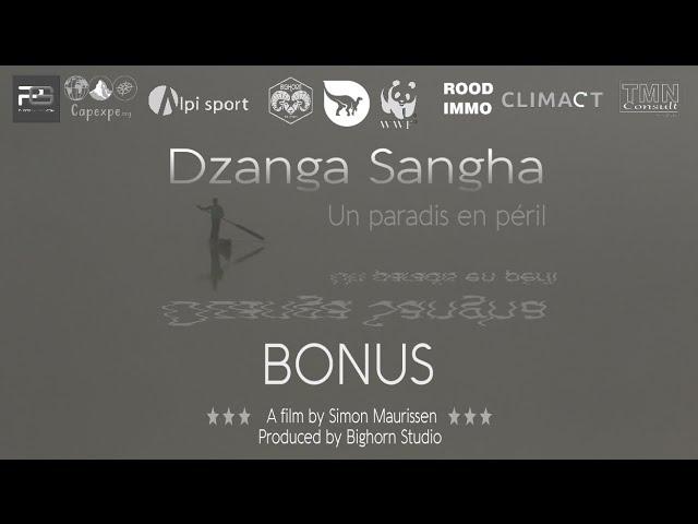 'Dzanga Sangha, un paradis en péril' 2016 - BONUS population - VF