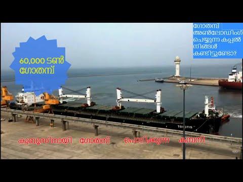 The Ship unloading and The Milling Company | Saudi arabia | GSFMO| SAGO
