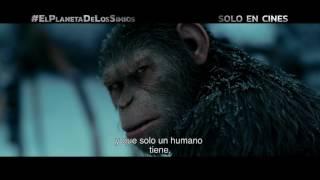 El Planeta de los Simios: La Guerra | TV spot VIRUS | Próximamente - Solo en cines