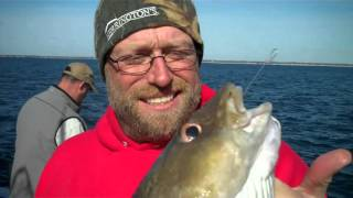 Codfish, Seabasss & Porgies Fantastic Fall Fishing on the Black Hawk