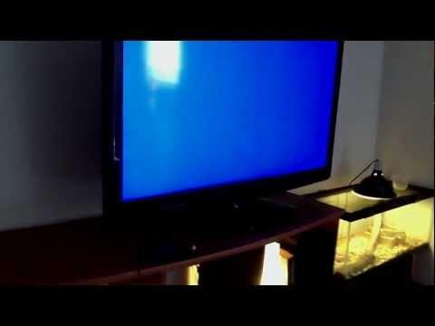 hisense tv doovi