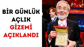 Bir Günlük Açlık Sırrı Nobel Ödülü Aldı