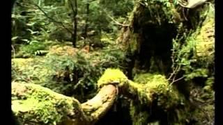 Мудрец Йога Васиштха - Обучение Рамы и полное понимание истинного абсолюта. 054