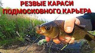 Рыбалка на карьере Караси монстры рвут снасти