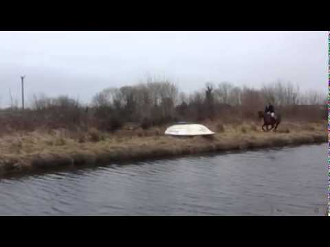 Horse Fails To Jump Over Boat