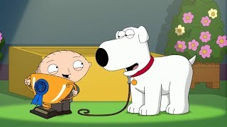Brian joins Dog Show