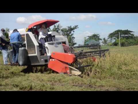Mechanized rice farming