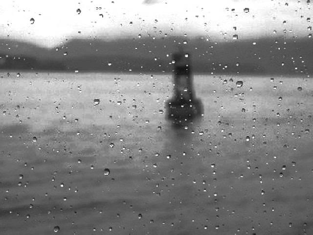 rufus-wainwright-shadows-ocean3030if