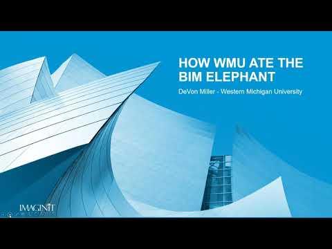 How to Eat the BIM Elephant