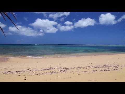 Koro Island, Fiji Matana Plantation auction without reserve 6/28/17