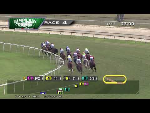 Tampa Bay Downs Replay 4/3/20 Race 4