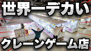 Went to World's Biggest UFO Catcher Store and played to get tons of prizes!!