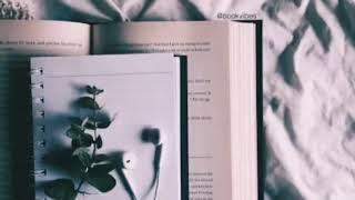 Simple plan ~ Perfect world(Lirik terjemahan)