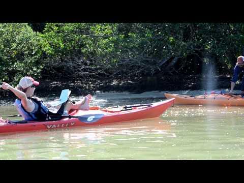 adventurous days in florida essay