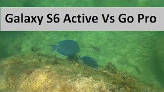 Galaxy S6 Active Vs. GoPro Hero 4 Black Edition - Underwater Video Recording Comparison