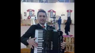 PAUL STANGA LIVE Muzica populara de petrecere