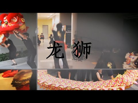 UTAR Wushu Club 10th Anniversary   Lion & Dragon Division Video