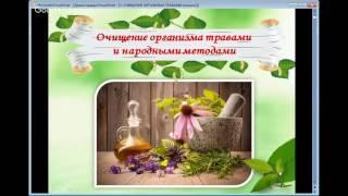 Как очистить организм травами | Рецепты вкусных блюд для очищения организма от шлаков