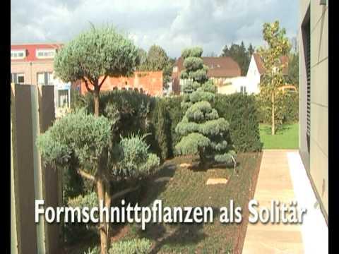 Genialer schöner Garten in Hannover - YouTube