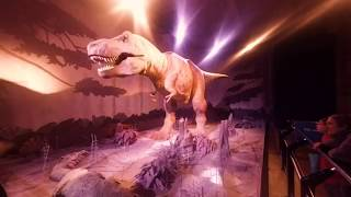 Dive Into the Past! Breathtaking Tour around London's Natural History Museum - VR 180 3D Experience