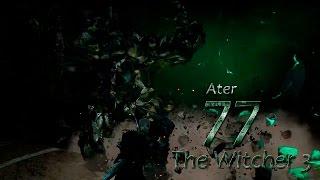 The Witcher 3 [Патч 1.11] #77 сер. (Заказ: дом с привидениями)