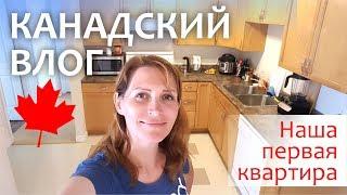 видео Читайте, какая плита на кухне будет экономичнее и эффективнее