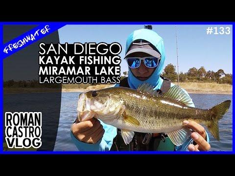 Spring Fishing Largemouth Bass In San Diego Miramar Lake