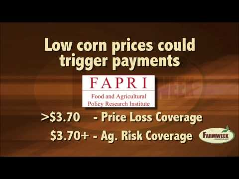 Corn prices may trigger Farm Bill subsidies