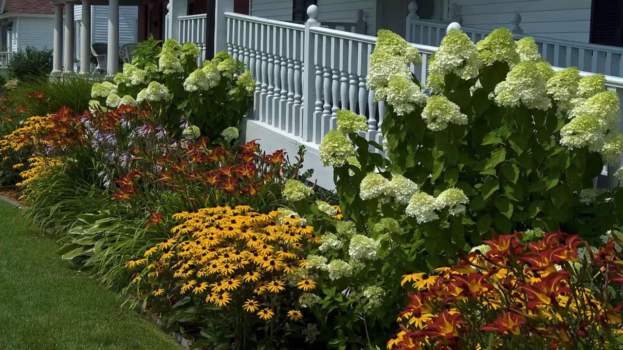 Hydrangea Garden Design