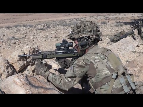 The Tigers Roam The Jordanian Desert | Forces TV