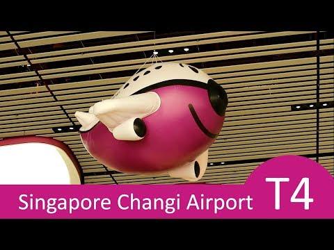 Singapore Changi Airport Terminal 4 New Travel Experience