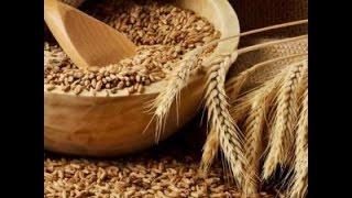 брага на пшенице
