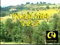 Ye Addis Ababa Gudoch Ethiopian New Full  Movie 2016