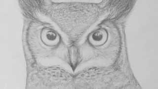 owl drawing pencil sketch face easy realistic simple basic drawings draw sketches paintingvalley explore